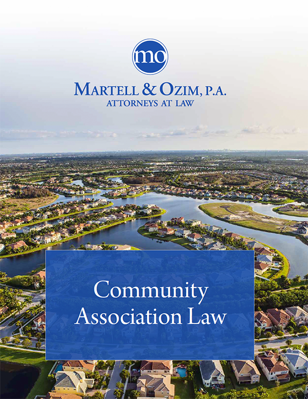 Martell & Ozim P.A. - Law Firm Brochure